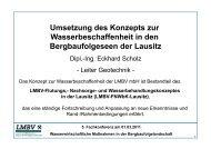 Umsetzung des Konzepts zur Wasserbeschaffenheit in den ... - LMBV