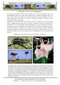 Download als PDF (1,9 MB) - Madagaskar Travel - Page 2