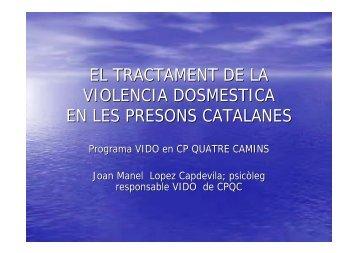 Joan Manel Cap de Vila, Programa de violència domèstica (VIDO)