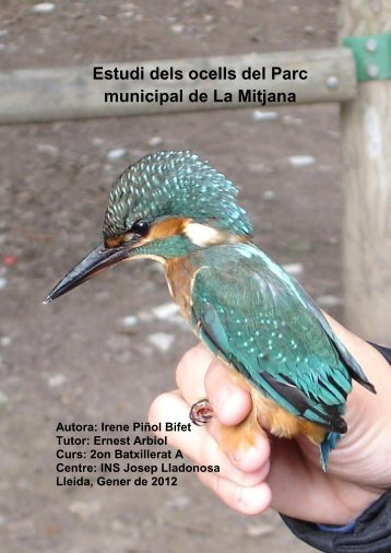 Estudi dels ocells del Parc municipal de La Mitjana (Lleida). - Inici