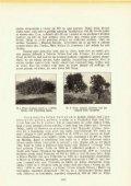 ŠUMARSKI LIST 12/1934 - Page 7
