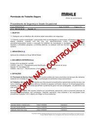 Permissão de Trabalho Seguro.pdf - Mahle.com
