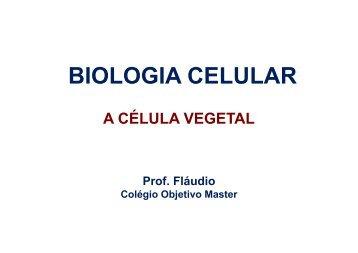 BIOLOGIA CELULAR - A CÉLULA VEGETAL.ppt [Modo de ...