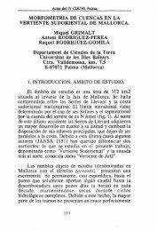 MORFOMETRIA DE CUENCAS EN LA VERTIENTE SUDORIENTAL ...