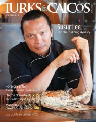 Susur Lee - Turks & Caicos Magazine