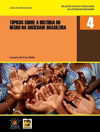 tópicos sobre a história do negro na sociedade brasileira