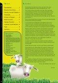 REVISTA - Sementes JC Maschietto - Page 2