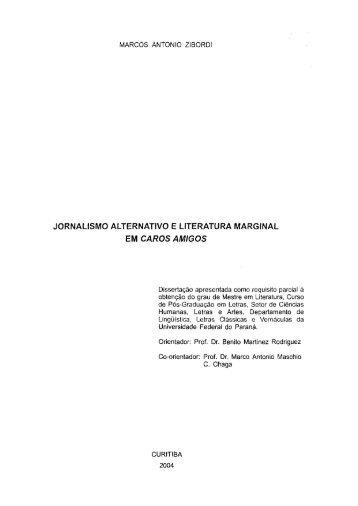 D - ZIBORDI, MARCOS ANTONIO.pdf - Universidade Federal do ...