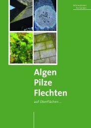 Algen Pilze Flechten - Bundesausschuss Farbe und Sachwertschutz ...