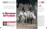 N.15 - La nostra storia - Associazione Italiana Allevatori