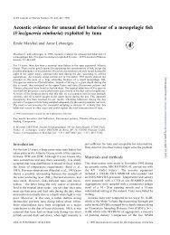 Vinciguerria nimbaria - ICES Journal of Marine Science