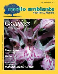 Descargar - Revista Medio Ambiente
