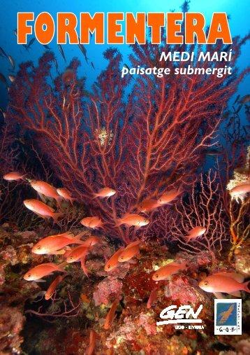 MEDI MARÍ paisatge submergit - GEN-GOB Eivissa