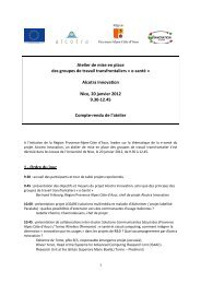Nice first cross-border working group minutes January 2012
