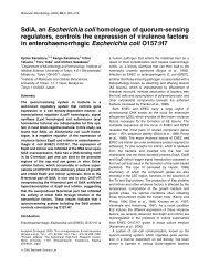 SdiA, an Escherichia coli homologue of quorum-sensing ... - ZMBH