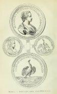 Amori di Carlo Gonzaga e di Francesco de Medici, manuscritti ... - Page 6