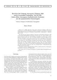 Revision der Gattung Amarygmus Dalman, 1823 sowie verwandter ...