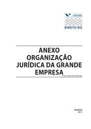Organização Jurídica da Grande Empresa - Fundação Getulio Vargas