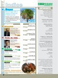 Dezembro de 2007 - Revista Canavieiros - Page 4
