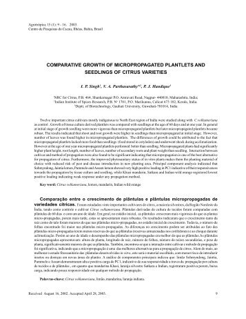 comparative growth of micropropagated plantlets and ... - Ceplac