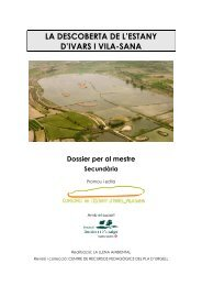 Dossier Mestre - Estany d'Ivars i Vila-sana