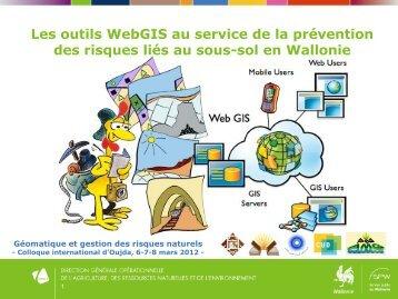Les outils WebGIS au service de la prévention des risques liés au ...