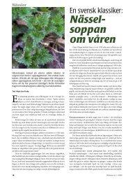 Nässelsoppan om våren (pdf) - Fobo