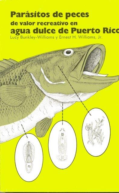parásito en saco de flotador de pescado