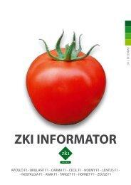 ZKI INFORMATOR