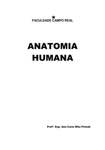 ANATOMIA HUMANA - CAPRI Organização Contábil