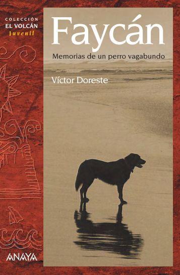 Faycán, memorias de un perro vagabundo - Anaya Infantil y Juvenil