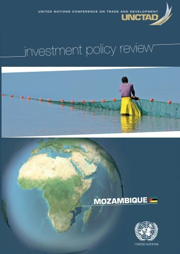 investment policy review