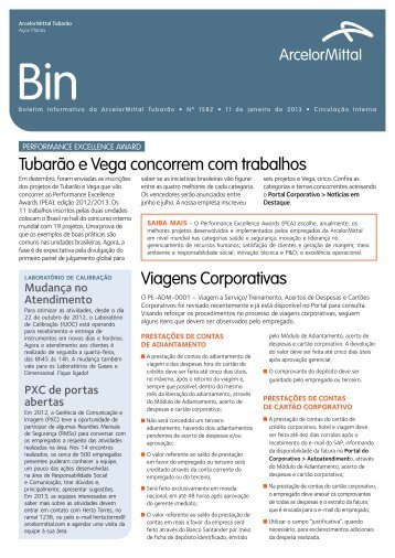 BIN - Fundação ArcelorMittal Brasil