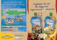 Marketingplan 2013