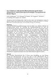 Zur Technik der Vielkanal-Oberflächenelektromyografie mittels ...