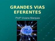 GRANDES VIAS EFERENTES - VivianeMarques.com.br