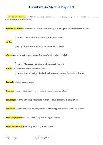 Estrutura da Medula Espinhal - Zago XLVI.pdf