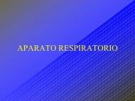 C4 APARATO RESPIRATORIO.pdf