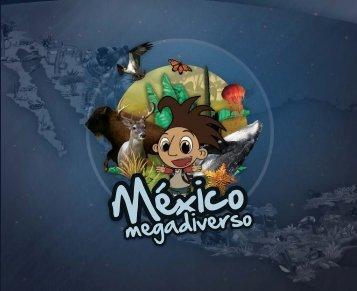 México México