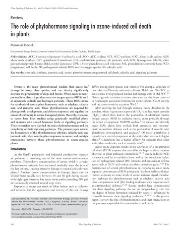 The role of phytohormone signaling in ozone‑induced cell death in ...