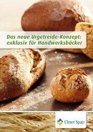 Konzept - MeisterMarken - Ulmer Spatz