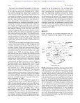 Coevolution of group II intron RNA structures with their intron ... - Page 4