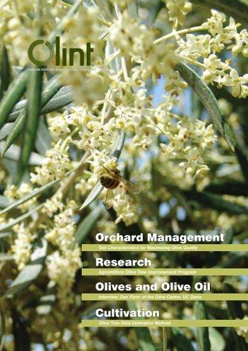 Olive Tree Yield Estimation Method - Olint