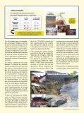 O RISCO DA CLASSIFICAçãO DE BARRAGENS POR CATEGORIA ... - Page 2