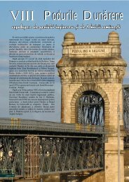 Podurile Dunarene - Turist in Romania