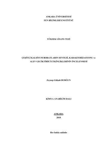 Dosyayı İndir - Ankara Üniversitesi Açık Erişim Sistemi
