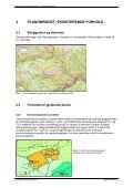 Planskildring - Ål kommune - Page 7