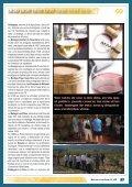 Turismo. RUTA CON ENCANTO POR LA TOSCANA ... - Alforins - Page 2
