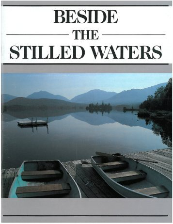 Beside the Stilled Waters - Adirondack Council