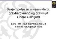 Bekjempelse av gravbergknapp og russesvalerot i Oslo og Akershus.
